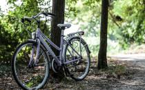 Bici turismo donna 21V